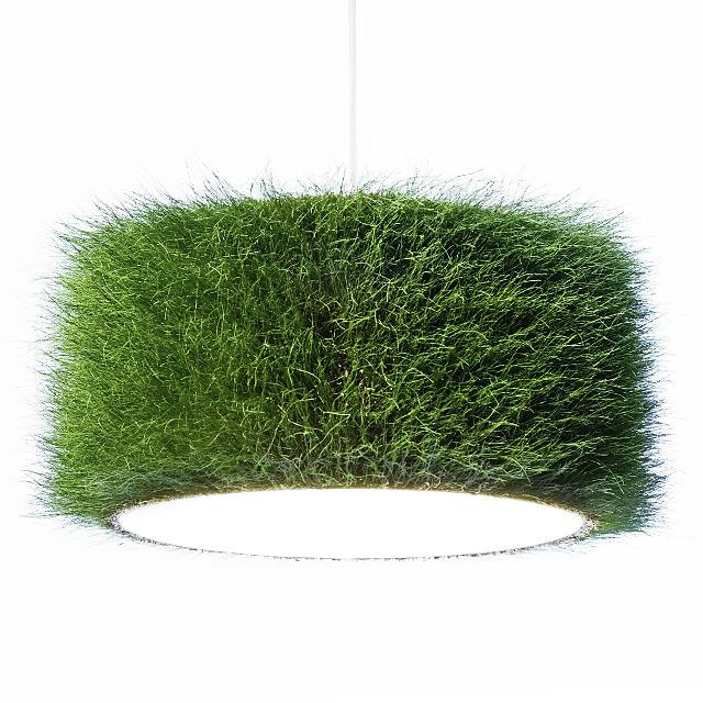 Graslampe von grassland